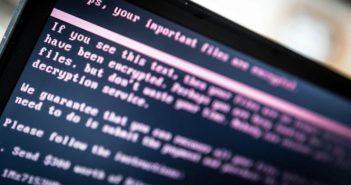 virus ransomware malware windows